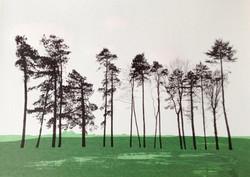 Great Tew trees - screenprint
