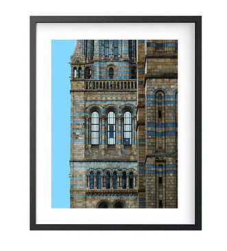 Natural History Museum framed.jpg
