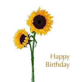 Sunflower 6x6 card happy birthday.jpg