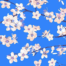 Lucy Cooper floral greetings card blossom