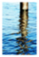 River Thames reflection with border.jpg