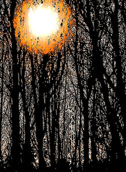 Little Tew trees for card (cropped).jpg