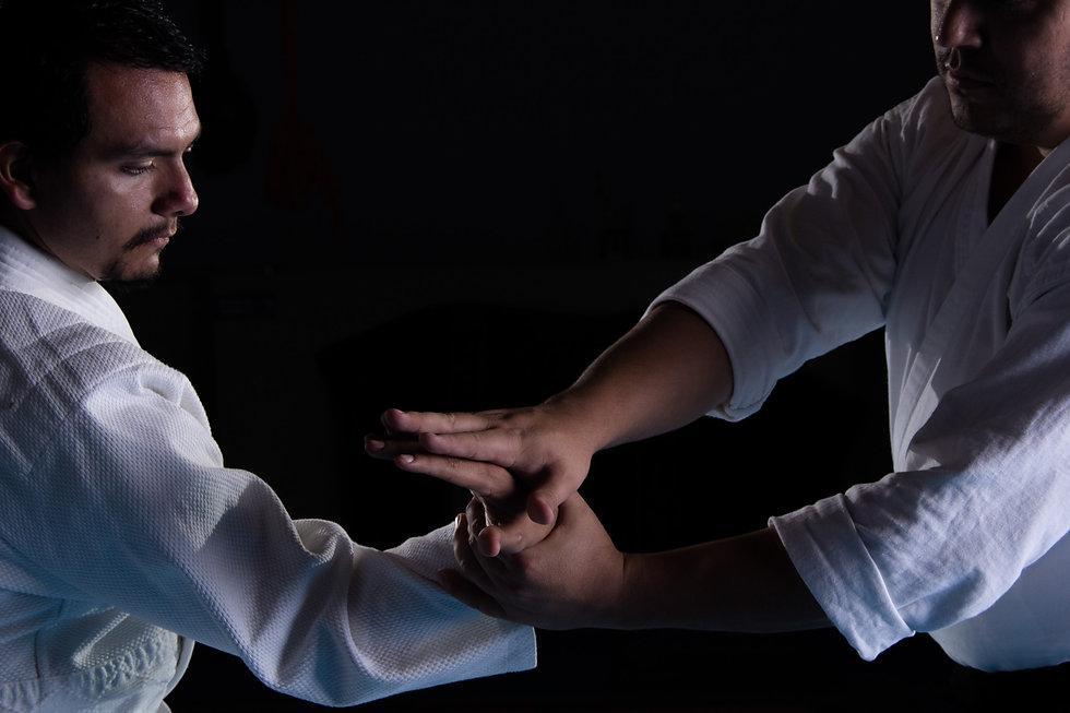 Aikido Tecnica.jpg