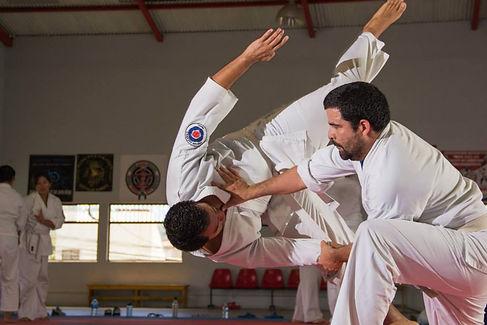 Aikido Practica.jpeg