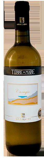 Vino Bianco Carugio 2019 - Arrigoni Vini