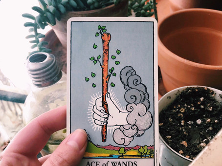 Tarot Tuesday: Ace of Wands