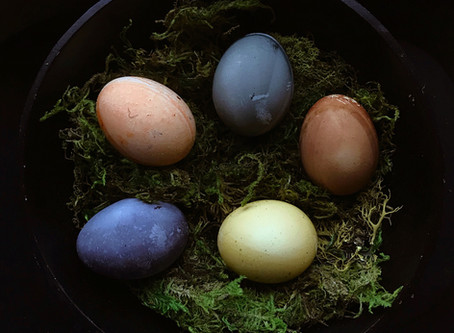 Sage Advice Saturday: Naturally Dyed Eggs