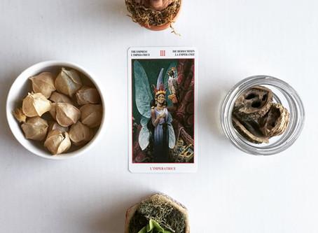 Tarot Tuesday: III, The Empress