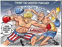 Ben Garrison Trump counter Punch.jpg