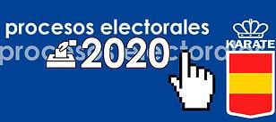 elecciones 2020.jpg