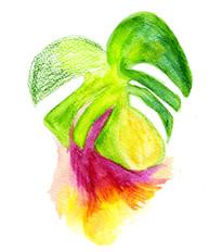 Leaf perfume