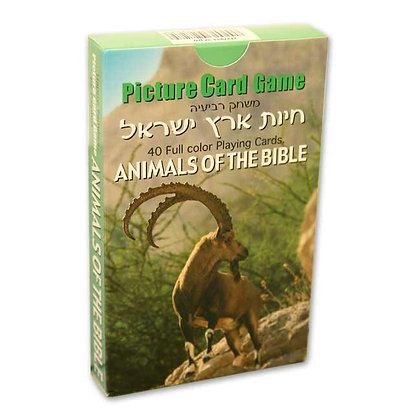 Picture Card Game- Animals of the Bible