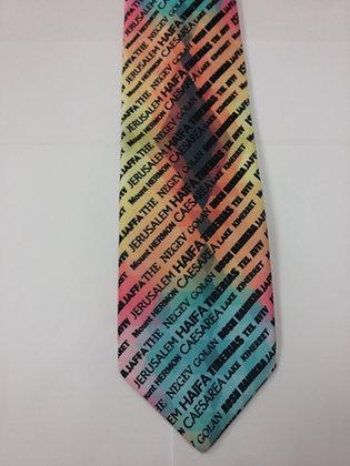 Multi- Colored Israel Tie
