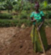 Tending her garden in Rwanda.jpg