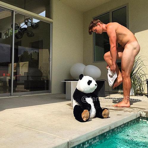Pandas Have More Fun