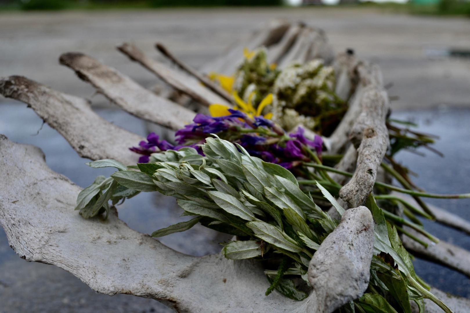 Bone and Wildflower