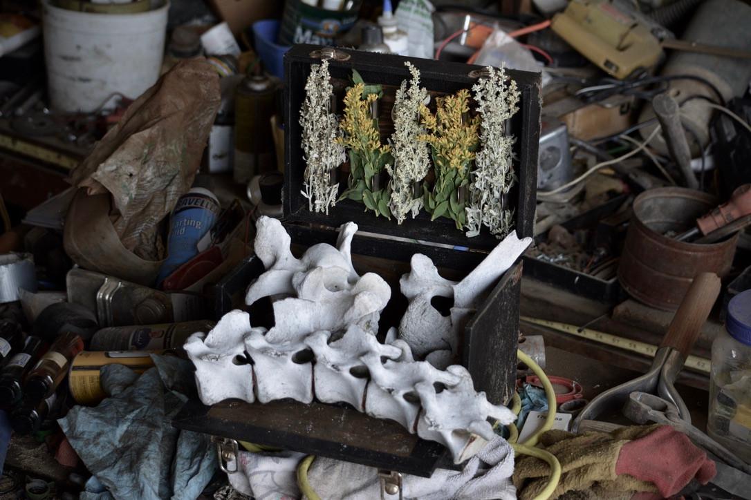 Bone and Wildflower 2
