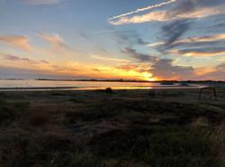 Kvällsbild över stranden Träslövsläge
