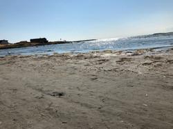 Stranden i Träslövsläge