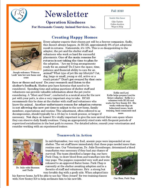 Newsletter Fall 2020 jpeg pg 1.jpg