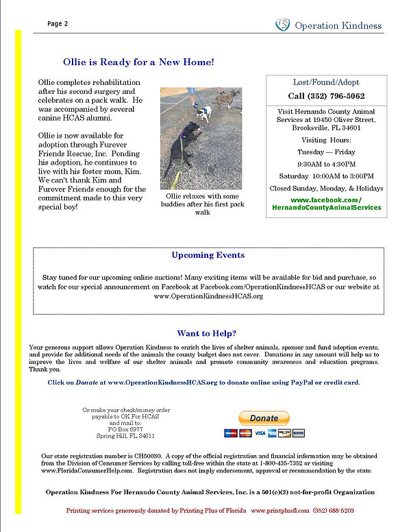 Newsletter Spring 2021 p2.jpg