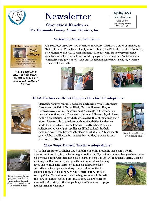 Newsletter Spring 2021.jpg
