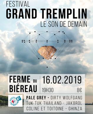 FESTIVAL GRAND TREMPLINS 2019!