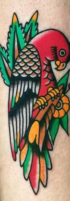 Papagaio Old School Tattoo