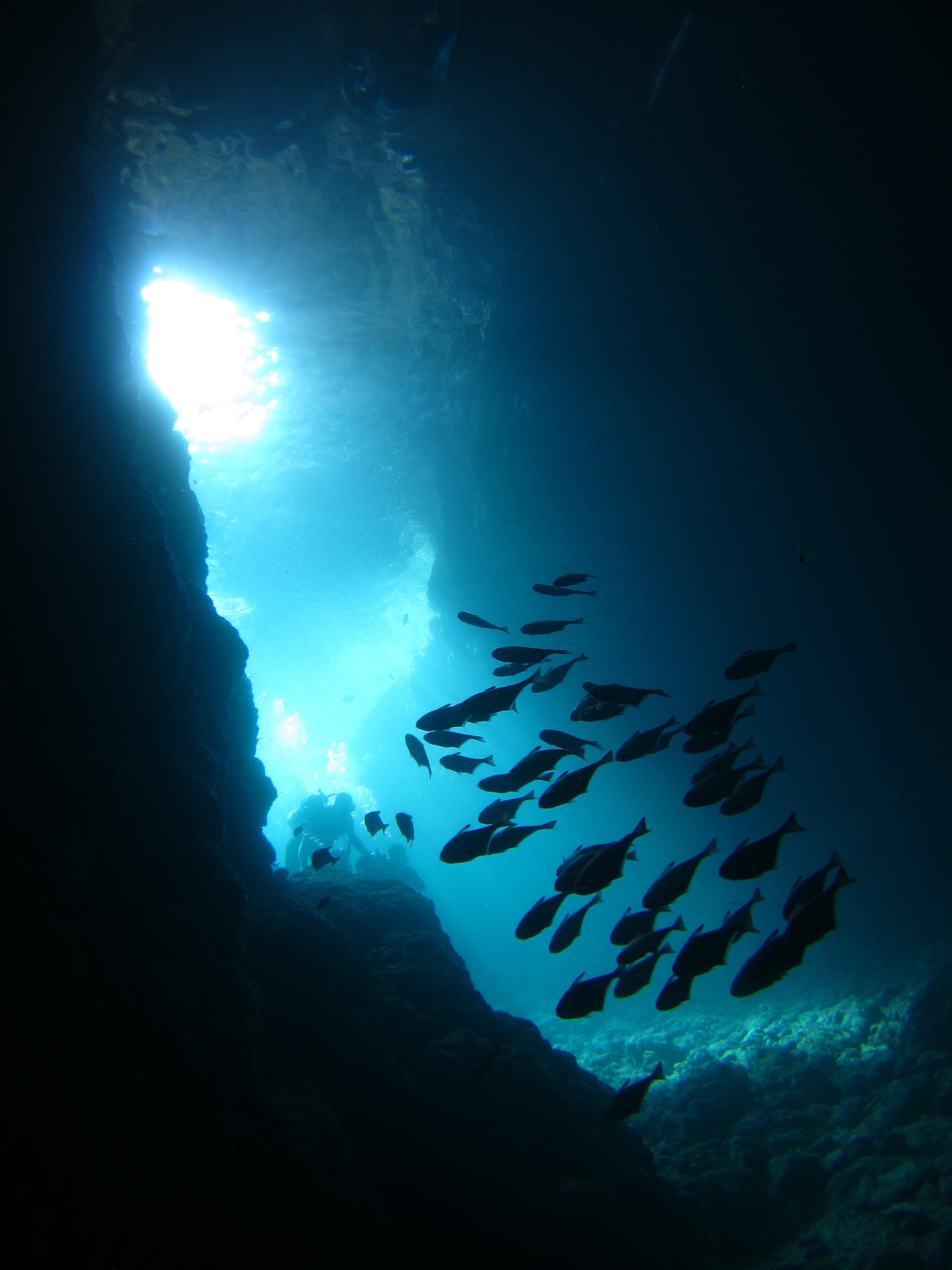 蒼の洞窟ポイント
