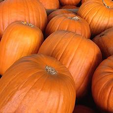 farm-pumpkins.jpg