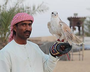 5-emirates-SIR BANI YAS ISLAND-falcon.jp