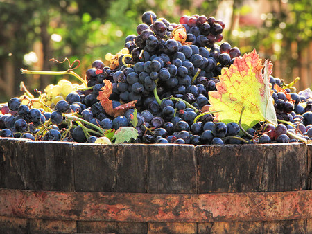 California Crushes Lowest Total Tonnage in a Decade, Grape Prices also Down