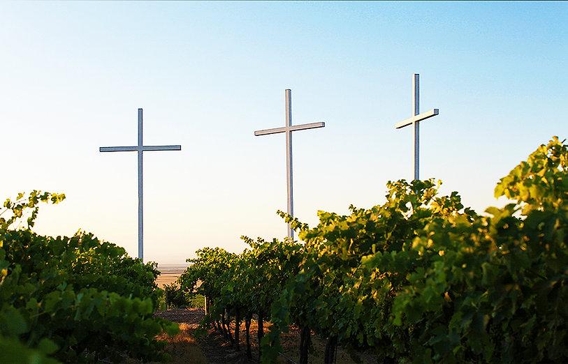 CCW-vineyard-crosses.jpg