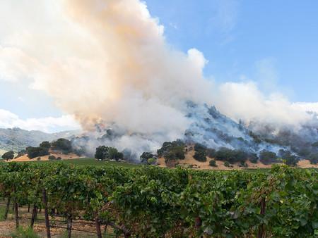 Napa Fires Hurt Nevada Wine Industry