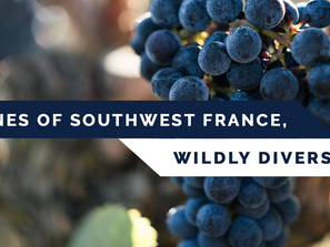 Wine Enthusiast Virtual Event-Wines of SW France