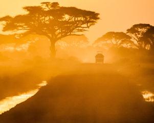 2-africa-road.jpg
