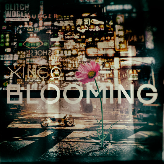 XINGO - Blooming (Original Mix)