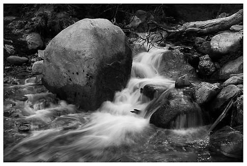 Chorrillo Fueguino / Small Stream from Tierra del Fuego