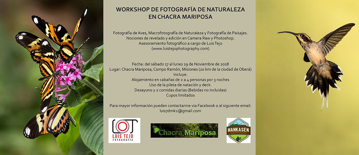 FLYER-WORKSHOP.jpg