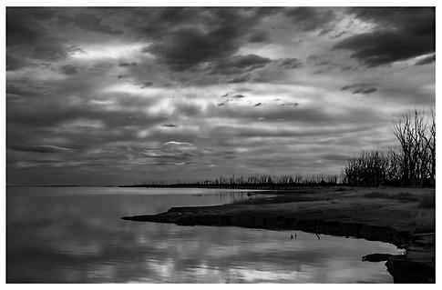 Invierno en la Laguna / Winter in the Lagoon