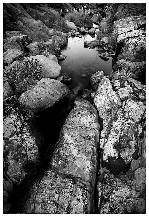 Arroyo Serrano / A Stream in the Mountains