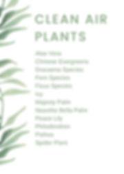 Clean Air Plants.jpg