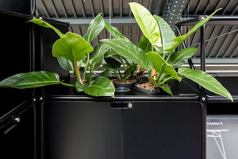 System180 & Florafilt @ designpost (6).j