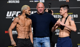 Rest? What's Rest? UFC 256 Predictions