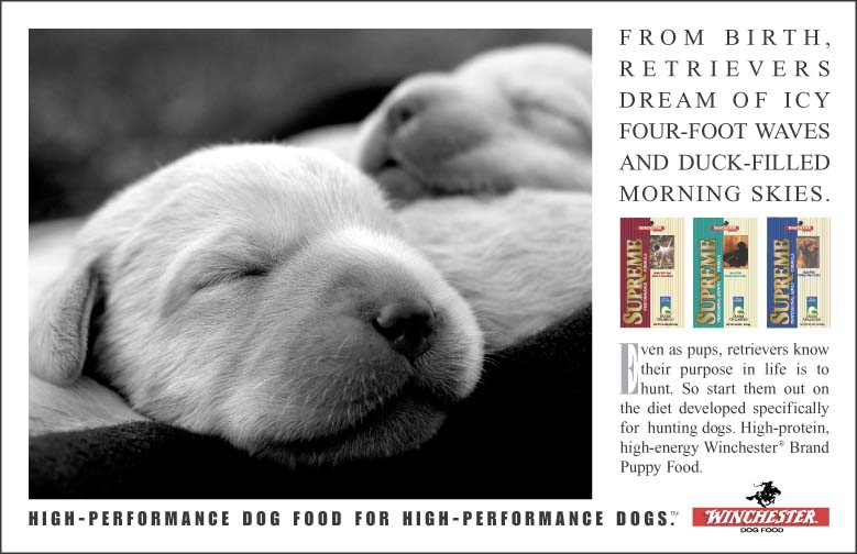 Winchester Dog Food Puppy Dreams Ad