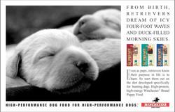 Winchester Dog Food Puppy Dreams Ad