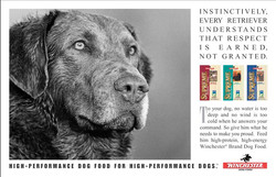 Winchester Dog Food Instincts Ad