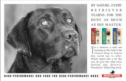 Winchester Dog Food Yearning Ad
