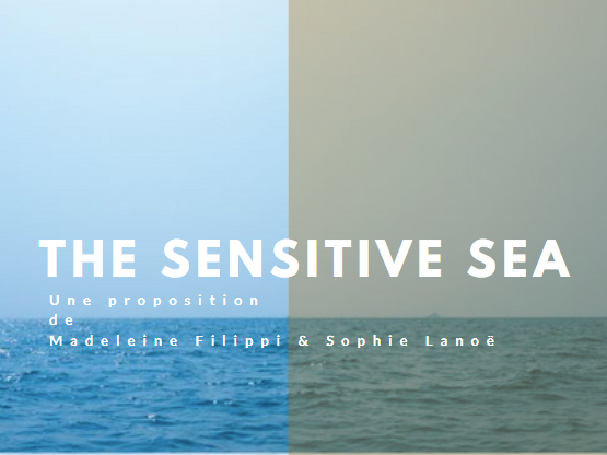 The Sensitive Sea