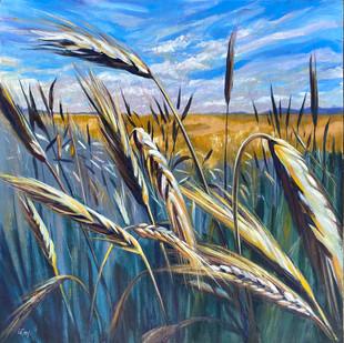 Dancing Wheat